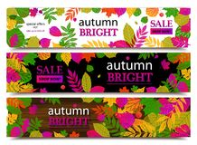 Autumn sale banners. Vector illustration Royalty Free Stock Photos