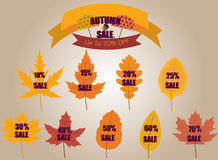 Autumn SALE Banners. Vector Autumn SALE Banners on Leafs up to 70 off Stock Image