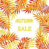 Autumn sale border. Autumn sale banner, frame, border with colorful hand draw autumn leaves. Fall sale design poster background. Layout for discount labels Stock Photo