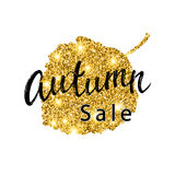 Autumn Sale brush lettering. Gold glitter banner design with sparkles on white background. Seasonal discount fall poster Stock Images