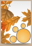 Autumn Sale. Business Flyer. Vector Illustration. Eps 10 Stock Images