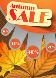 Autumn Sale. Business Flyer. Vector Illustration. Eps 10 Royalty Free Stock Photography