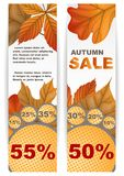 Autumn Sale. Business Flyer. Vector Illustration. Eps 10 Stock Image