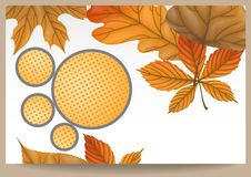 Autumn Sale. Business Flyer. Vector Illustration. Eps 10 Royalty Free Stock Photos