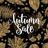 Autumn Sale Calligraphy Phrases no fundo das folhas Foto de Stock