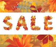 Autumn sale card Stock Photography