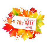 Autumn sale collection Royalty Free Stock Images
