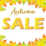 Autumn sale with colorful leaves Stock Image