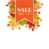 Autumn Sale - Colorful Leaves Background Stock Photos