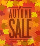 Autumn sale colorful natural leaves Royalty Free Stock Photo