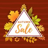 Autumn Sale com projeto do molde do triângulo ilustração do vetor