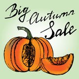 Autumn Sale Concept. Chopped pumpkin hand drawn handwriting. Letters vector Stock Photos