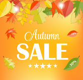 Autumn Sale Concept Vector Illustration Stockbilder