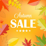 Autumn Sale Concept Vector Illustration Royaltyfria Foton