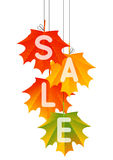 Autumn sale concept Stock Photo