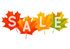 Autumn sale concept Royalty Free Stock Photography