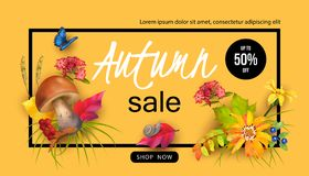 Autumn Sale Design Image stock