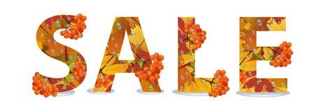 Autumn Sale Design Remise de chute L'inscription avec les feuilles d'érable et la branche de la sorbe avec des gouttes de pluie P Image libre de droits