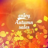 Autumn sale design template. Stock Photography