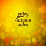 Autumn sale design template. Stock Photos