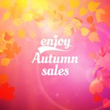 Autumn sale design template. Royalty Free Stock Photography