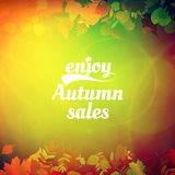 Autumn sale design template. Royalty Free Stock Image