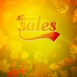 Autumn sale design template. Stock Photo