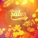 Autumn sale design template. EPS10 stock illustration