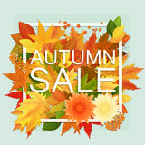 Autumn sale discount banner. Modern style Poster with golden orange foliage leaves. Stock Photography