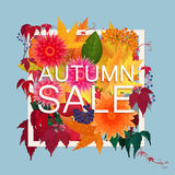 Autumn sale discount banner. Modern style Poster with golden orange foliage leaves, flowers and berries. Stock Images