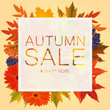 Autumn sale discount banner. Poster with golden orange foliage leaves. Royalty Free Stock Images