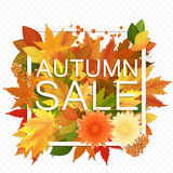 Autumn sale discount banner on the transperant alpha background. Modern style autumn Poster with golden orange foliage Stock Photo