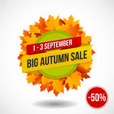 Autumn Sale Discount Logo of Embleem Royalty-vrije Stock Afbeelding