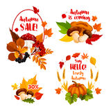 Autumn sale discount shopping vector icons set. Autumn Sale, Hello Fall icons for seasonal shopping discount promo or greeting card design. Vector 30 percent Stock Photo