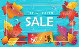 Autumn Sale Fall laisse la vue supérieure en bois Images libres de droits