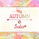 Autumn sale - fall leaves. EPS 10 Royalty Free Stock Image