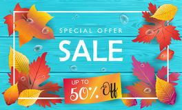 Autumn Sale Fall leaves wood top view Royalty Free Stock Images