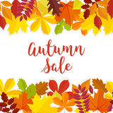 Autumn sale. Fall sale design. Can be used for flyers, banners or posters. Vector illustration with colorful autumn. Leaves Stock Photo