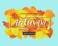 Autumn Sale Fashionable Banner Template with Colorful Fall Leaves on bright trendy blue background. Shopping Discount promotion. Poster, card, flyer, label Stock Photos