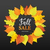 Autumn Sale Fashionable Banner Template with Colorful Fall Leaves Stock Image