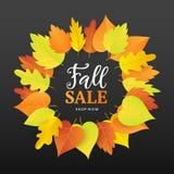 Autumn Sale Fashionable Banner Template com as folhas coloridas da queda Imagem de Stock