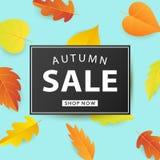 Autumn Sale Fashionable Banner Template com as folhas coloridas da queda Foto de Stock Royalty Free