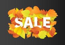Autumn Sale Fashionable Banner Template con la caduta variopinta va su fondo nero Fotografia Stock