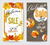 Autumn sale flyer two with autumn leaves Royalty Free Stock Photography