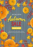 Autumn sale flyer. Vertical banner background with pumpkin, leaves at rectangular frame on a wooden table. Royalty Free Stock Photos