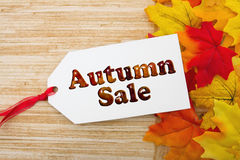 Autumn Sale Gift Tag Fotografie Stock