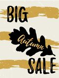Autumn Sale golden lettering typography design with black oak leaf and brush stroke.   Stock Photo