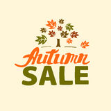 Autumn sale - hand drawn lettering Royalty Free Stock Image