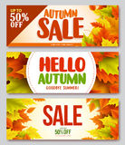 Autumn sale and hello autumn vector design set of banners and background. For fall season with maple leaves. Vector illustration Royalty Free Stock Photography