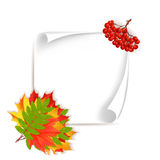 Autumn sale horizontal banner. Autumn orange, red, yellow, green leaves and rowen around big white paper. Cartoon vector illustration. Concept for autumn stock illustration